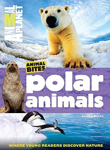 Animal Bites: Polar Animals (Paperback)