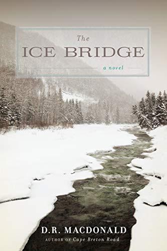 9781619021181: The Ice Bridge: A Novel
