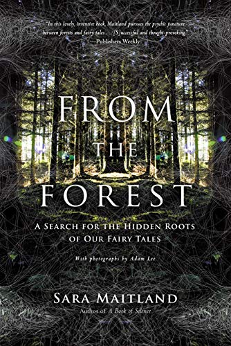 9781619021914: From the Forest: A Search for the Hidden Roots of Our Fairy Tales