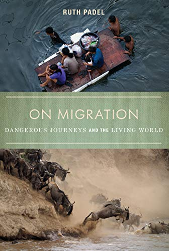 9781619021952: On Migration: Dangerous Journeys and the Living World