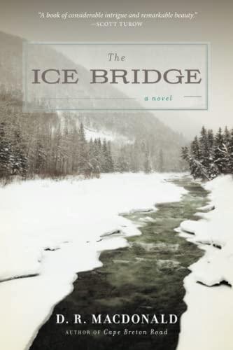 9781619023185: The Ice Bridge: A Novel