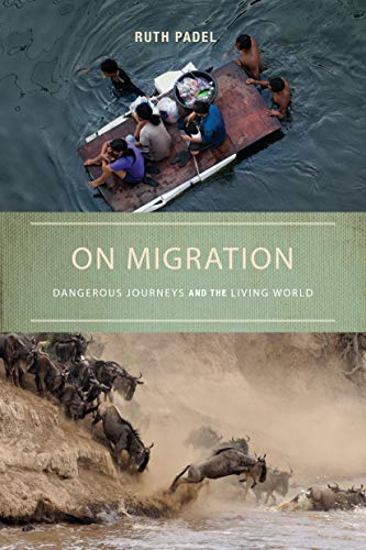 9781619024335: On Migration: Dangerous Journeys and the Living World