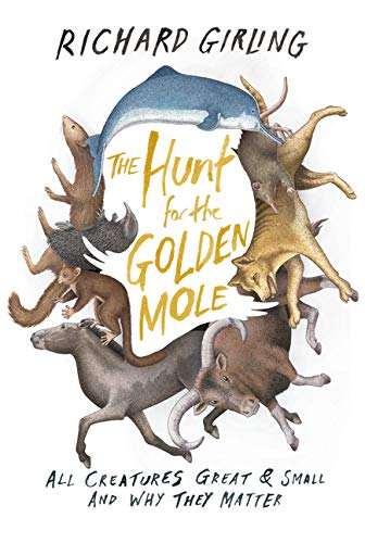 9781619024502: The Hunt for the Golden Mole All Creatures Great and Small and Why They Matter