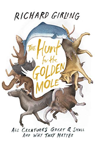 9781619025851: The Hunt for the Golden Mole: All Creatures Great & Small and Why They Matter