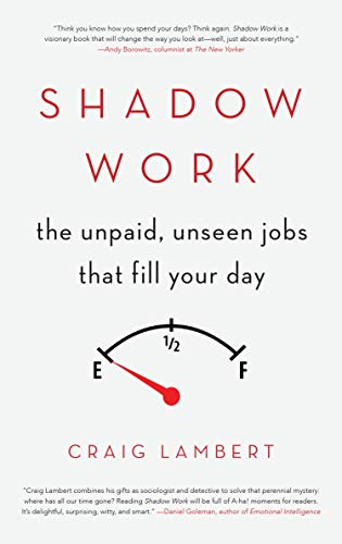 9781619027367: Shadow Work: The Unpaid, Unseen Jobs That Fill Your Day