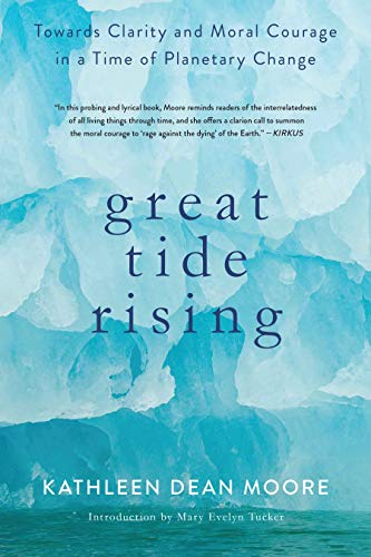 9781619029064: Great Tide Rising: Towards Clarity and Moral Courage in a time of Planetary Change
