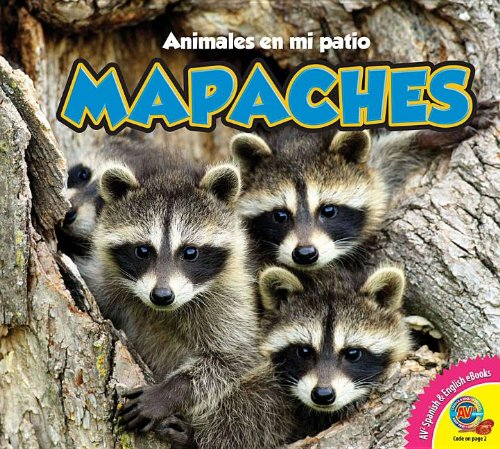 9781619131958: Mapaches, With Code (Animales En Mi Patio)