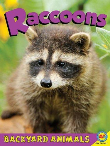 Raccoons (Backyard Animals): Hurtig, Jennifer