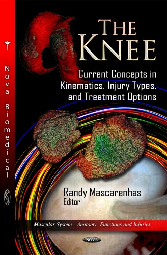 The Knee: Current Concepts in Kinematics, Injury Types, and Treatment Options (Muscular System - ...