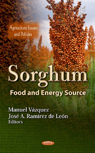 9781619423725: Sorghum: Food and Energy Source (Agriculture Issues and Policies)
