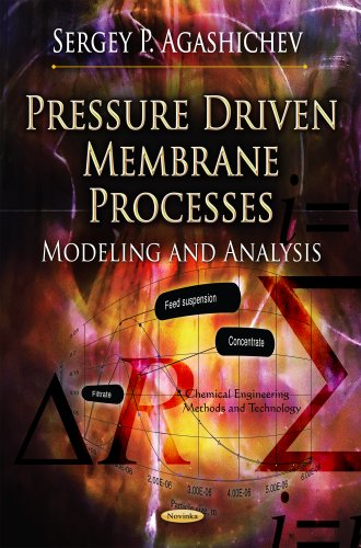 Pressure Driven Membrane Processes: Modeling and Analysis: Sergey P. Agashichev