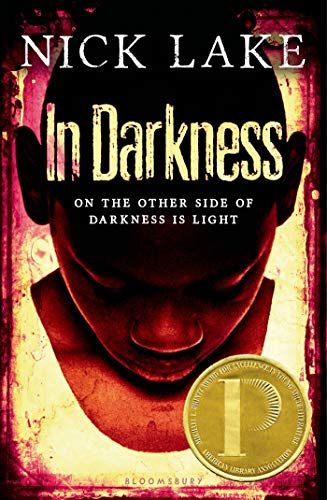 9781619631229: Holt McDougal Library: In Darkness