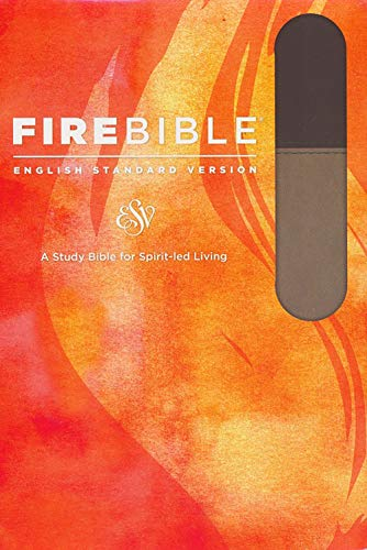 Fire Bible-ESV: Donald Stamps
