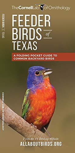 Feeder Birds of Texas: A Folding Pocket Guide to Common Backyard Birds (All About Birds Pocket ...