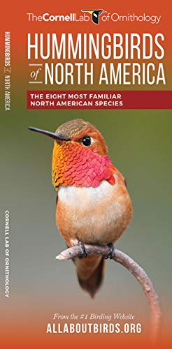 9781620052419: Hummingbirds of North America: The Eight Most Familiar North American Species (All About Birds Pocket Guide Series)