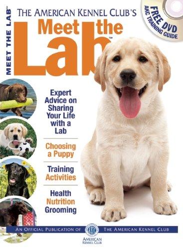 9781620080894: Meet the Lab (AKC Meet the Breed Series)