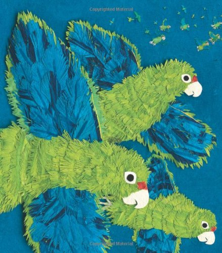 9781620140048: Parrots Over Puerto Rico (Americas Award for Children's and Young Adult Literature. Winner)