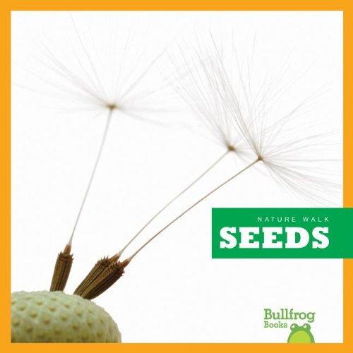 9781620310298: Seeds (Nature Walk)