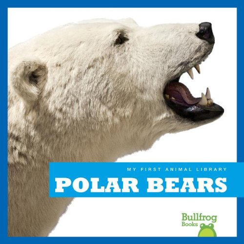 9781620310670: Polar Bears (Bullfrog Books: My First Animal Library)