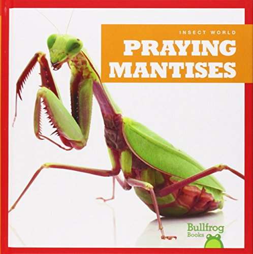 Praying Mantises (Hardcover): Mari C. Schuh