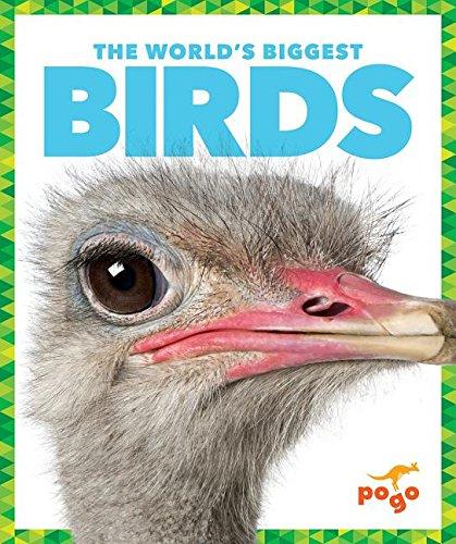 9781620312063: The World's Biggest Birds (The World's Biggest Animals)