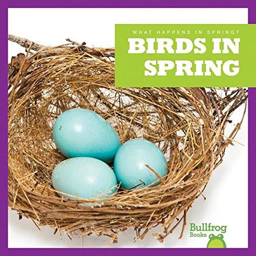 9781620312353: Birds in Spring (Bullfrog Books: What Happens in Spring?)