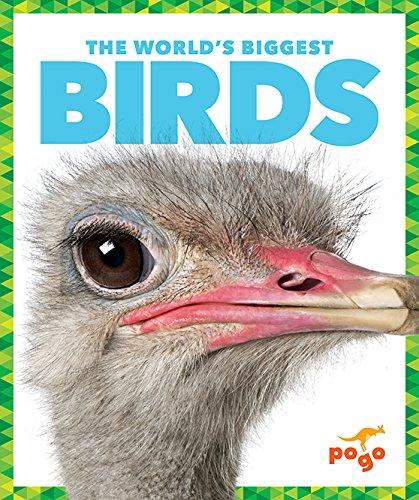 9781620312612: The World's Biggest Birds (World's Biggest Animals)