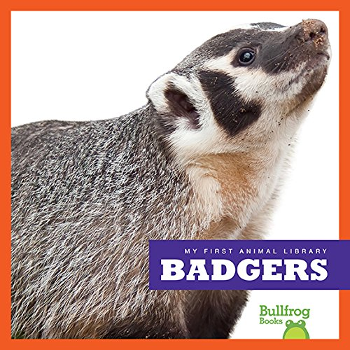 9781620312865: Badgers (Bullfrog Books: My First Animal Library)