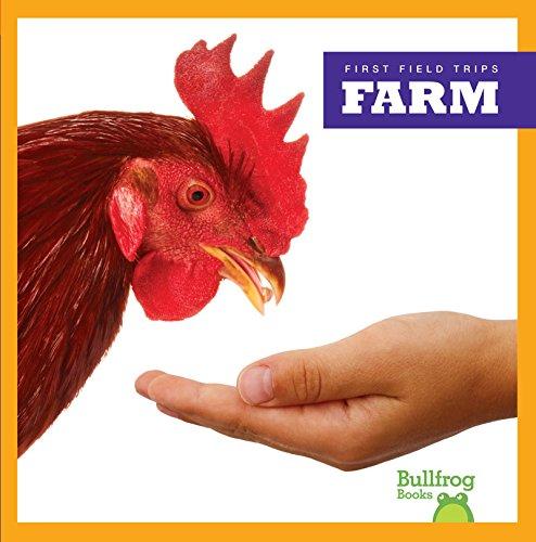 Farm (Hardcover): Rebecca Pettiford