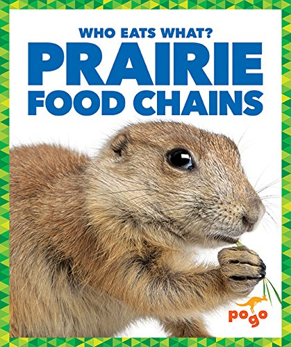 9781620313039: Prairie Food Chains (Pogo: Who Eats What?)