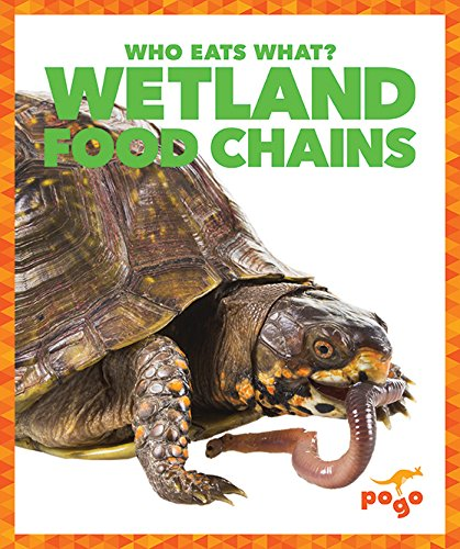 9781620313053: Wetlands Food Chains (Pogo: Who Eats What?)