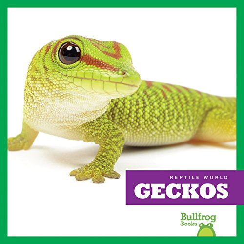 Geckos (Bullfrog Books: Reptile World): Vanessa Black