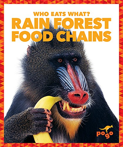 9781620314319: Rain Forest Food Chains (Pogo: Who Eats What?)