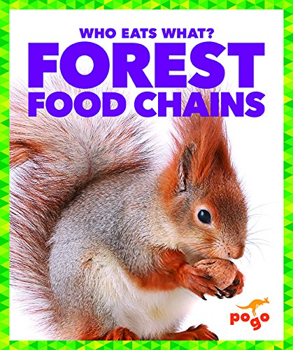 9781620316139: Forest Food Chains (Who Eats What?)