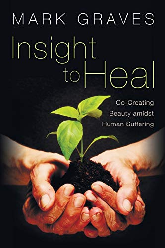 9781620321379: Insight to Heal: Co-Creating Beauty Amidst Human Suffering