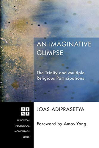 9781620326992: An Imaginative Glimpse: The Trinity and Multiple Religious Participations (Princeton Theological Monograph)
