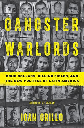 9781620403792: Gangster Warlords: Drug Dollars, Killing Fields, and the New Politics of Latin America