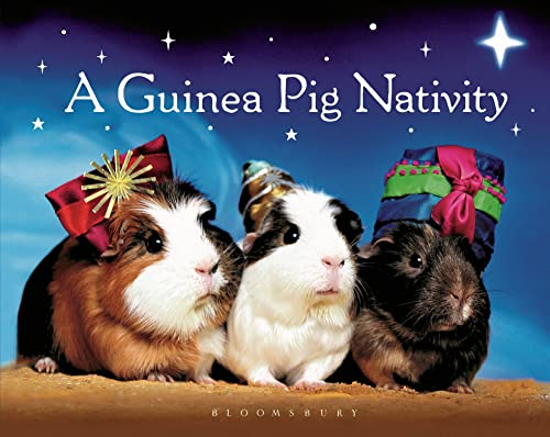 A Guinea Pig Nativity: GPV