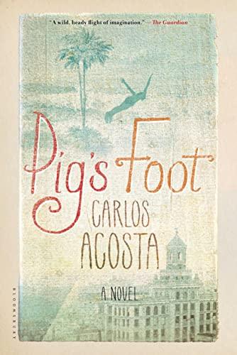 9781620407691: Pig's Foot: A Novel