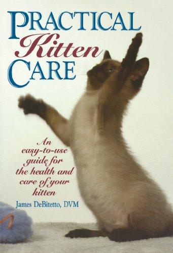 Practical Kitten Care: DeBitetto, James