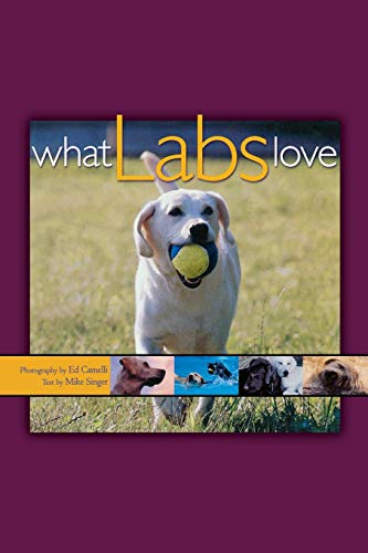 9781620457252: What Labs Love