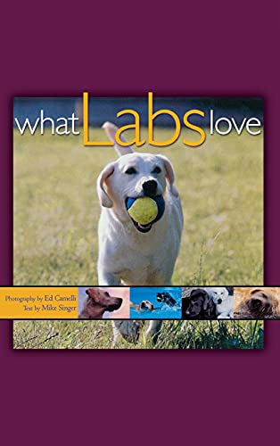 9781620458099: What Labs Love
