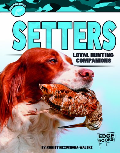 Setters: Loyal Hunting Companions (Hunting Dogs): Zuchora-Walske, Christine