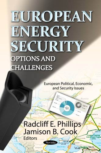 9781620818145: European Energy Security: Options and Challenges
