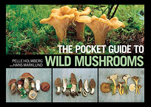 9781620877319: The Pocket Guide to Wild Mushrooms: Helpful Tips for Mushrooming in the Field