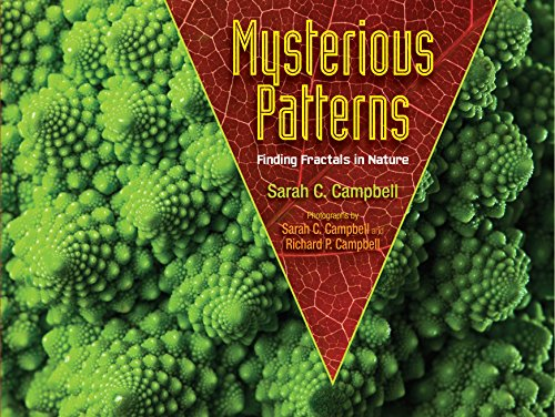 9781620916278: Mysterious Patterns: Finding Fractals in Nature