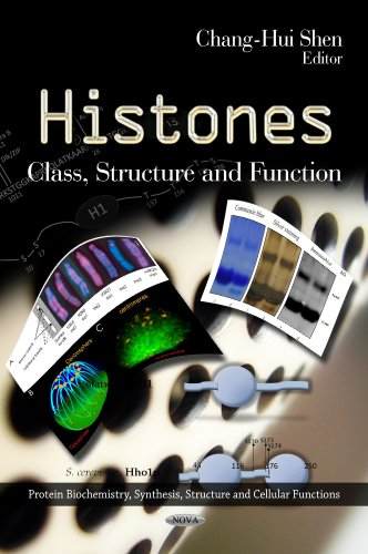 9781621002741: Histones: Class, Structure and Function (Protein Biochemistry, Synthesis, Structure and Cellular Functions)