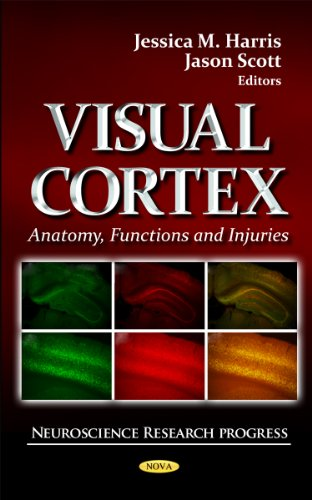 9781621009481: Visual Cortex: Anatomy, Functions and Injuries (Neuroscience Research Progress)
