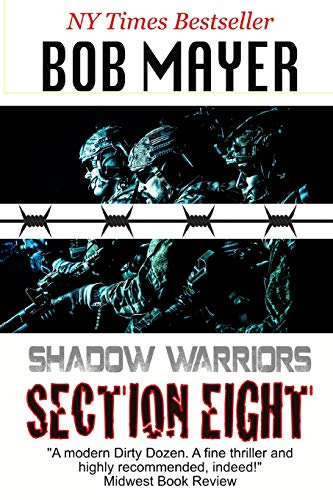 9781621250531: Section 8 (Shadow Warriors)