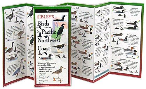 Sibleys Birds of Pacific NW Coast: David Allen Sibley